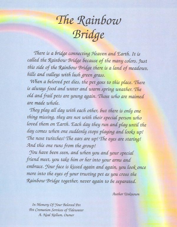Modest image throughout rainbow bridge poem for dogs printable